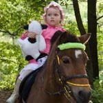 Катание на пони, лошадях