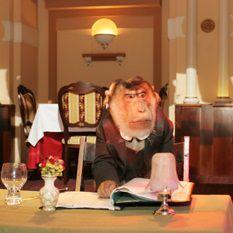 Мистер Вато, обезьянка